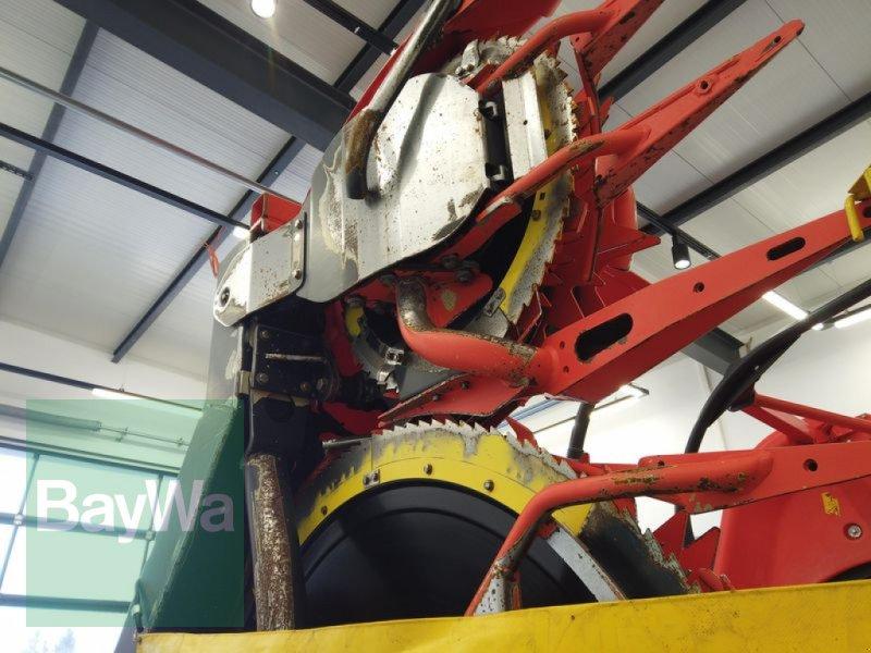 Maisgebiß des Typs Kemper 475 PLUS, Gebrauchtmaschine in Manching (Bild 15)