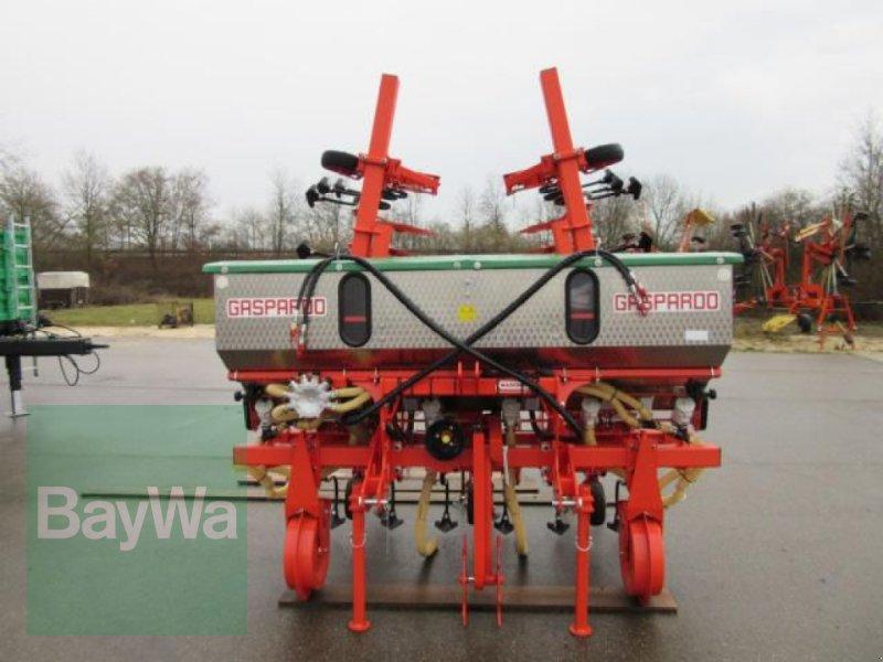 Maishackgerät des Typs Maschio HACKMASCHINE GASPARDO HS-6F, Neumaschine in Erbach