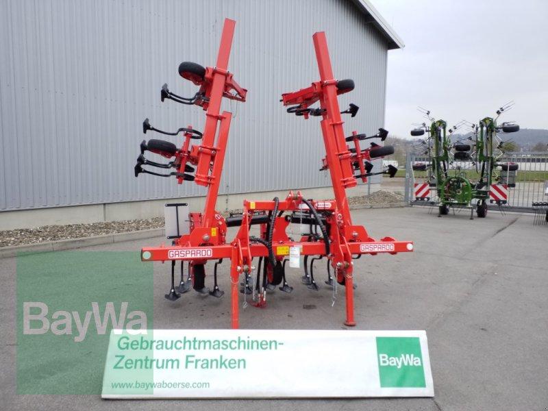 Maishackgerät du type Maschio Maishackgerät HS 6-R, Gebrauchtmaschine en Bamberg (Photo 1)