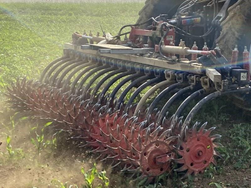 Maishackgerät des Typs Sonstige Rollhacke MRF 3,10 m breit, Gebrauchtmaschine in Schutterzell (Bild 1)