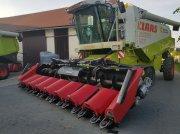 Maispflückvorsatz typu Geringhoff RD 875 FB, Gebrauchtmaschine w Korfantow