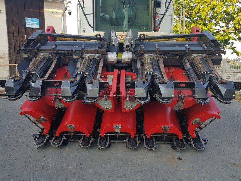 Maispflückvorsatz typu Geringhoff RD 875 FB, Gebrauchtmaschine w Korfantow (Zdjęcie 5)