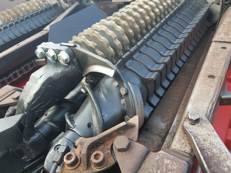 Maispflückvorsatz typu Geringhoff RD 875 FB, Gebrauchtmaschine w Korfantow (Zdjęcie 8)