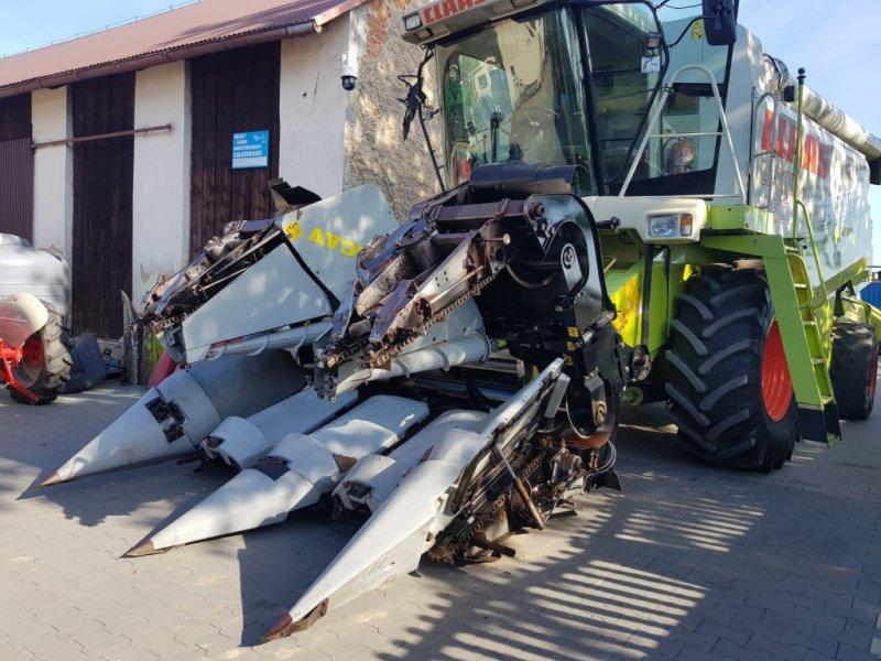 Maispflückvorsatz tip Grecav MAXIMA, Gebrauchtmaschine in Korfantow (Poză 6)