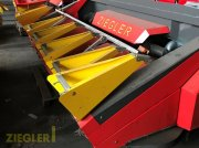 Maispflückvorsatz des Typs Ziegler Corn Champion 5-Reiher, Gebrauchtmaschine in Pöttmes