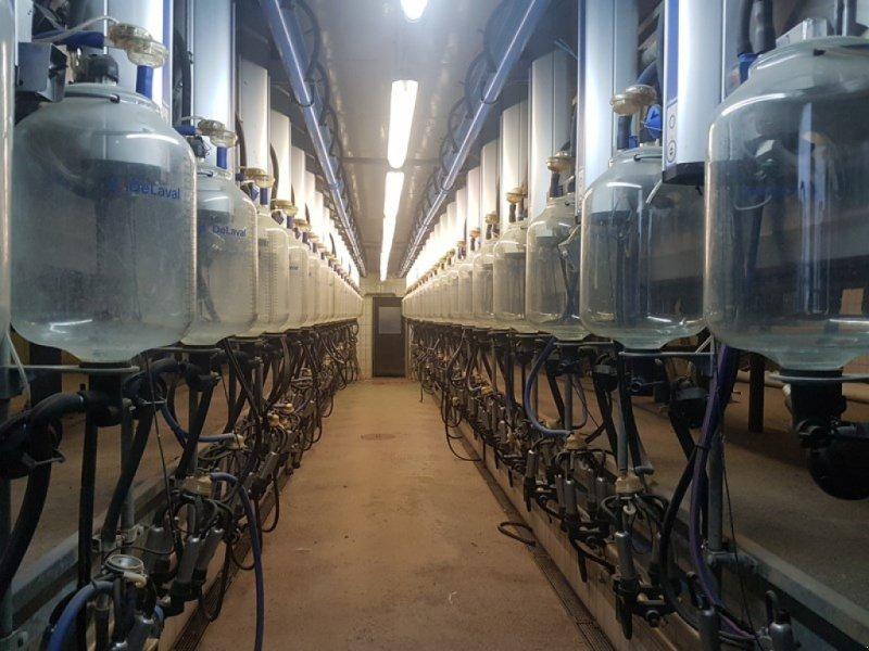 Melkstand des Typs De Laval 2*24 Side by Side Melkstand, Gebrauchtmaschine in Chur (Bild 1)