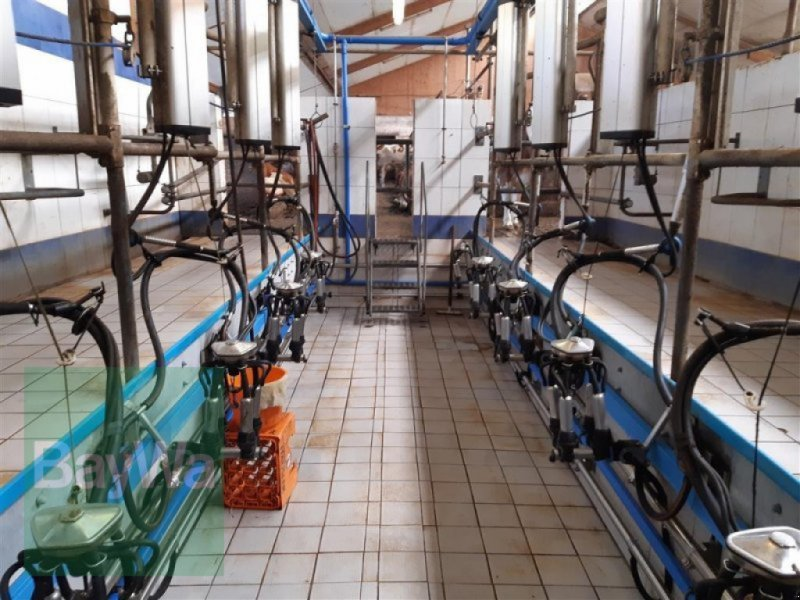 Melkstand типа De Laval Fischgräte 2x5, Gebrauchtmaschine в Neunburg v. Wald (Фотография 2)