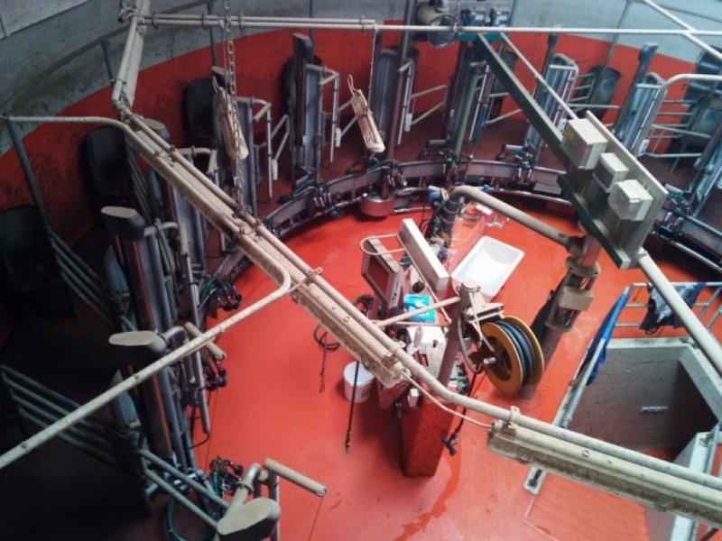 Melkstand типа GEA AR MAGNUM 40-F 20 Plätze, DT70, Posicare, Gebrauchtmaschine в Bözberg (Фотография 1)