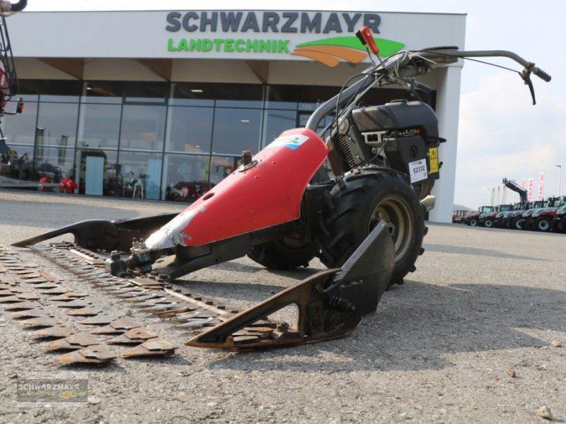 Motormäher typu Aebi AM9, Gebrauchtmaschine w Gampern (Zdjęcie 1)