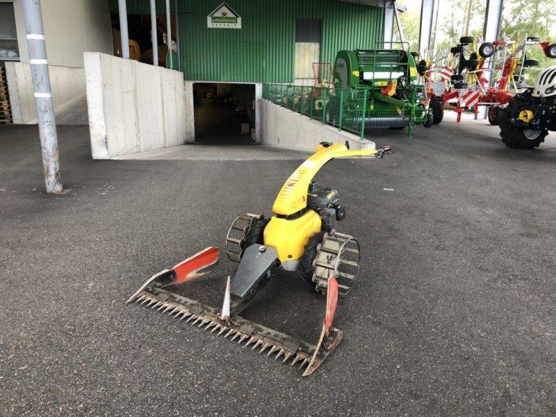 Motormäher des Typs Moty Motormäher, Gebrauchtmaschine in Bergheim (Bild 1)