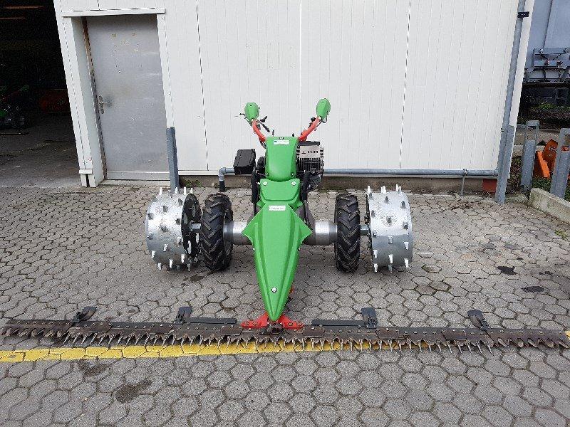 Motormäher типа Rapid Monta 1681 Motormäher, Ausstellungsmaschine в Chur (Фотография 1)