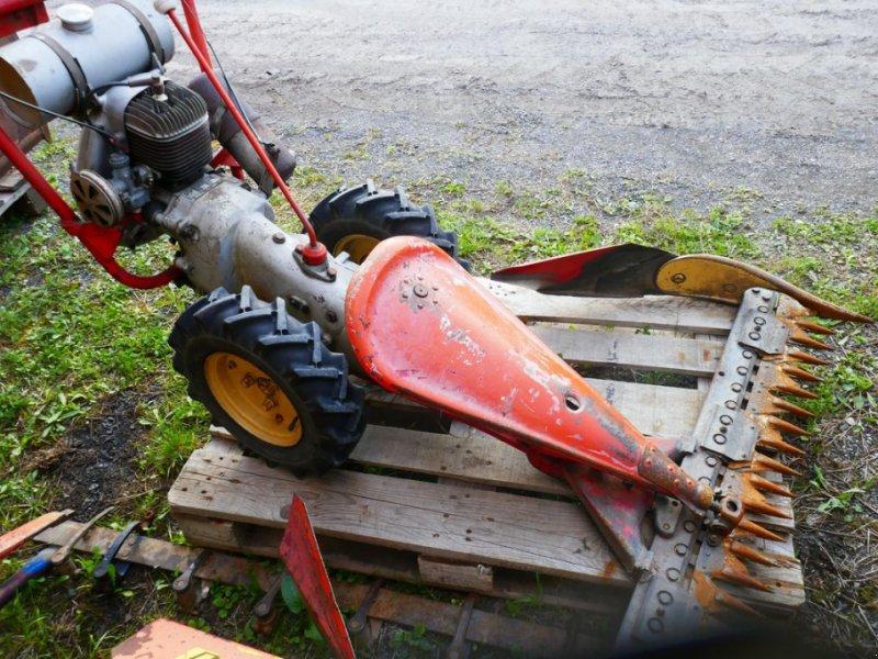 Motormäher tip Reform RM 158, Gebrauchtmaschine in Villach (Poză 1)