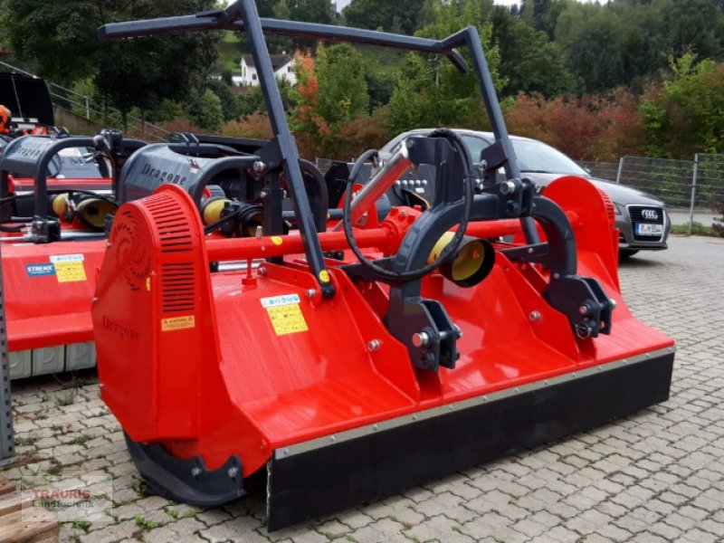 Mulcher типа DRAGONE FS 250 Forstmulcher, Neumaschine в Mainburg/Wambach (Фотография 1)