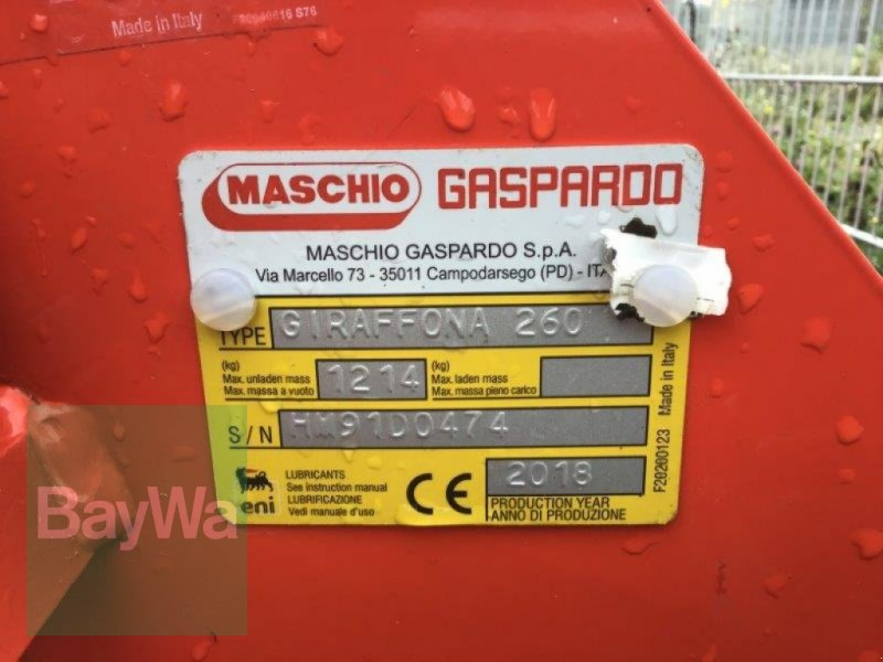 Mulcher του τύπου Maschio Giraffona 260, Gebrauchtmaschine σε Eislingen (Φωτογραφία 3)