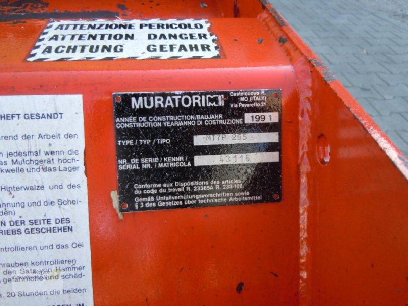 Mulcher типа Muratori SCHLEGELMÄH.MT 7P225, Gebrauchtmaschine в Schora (Фотография 9)