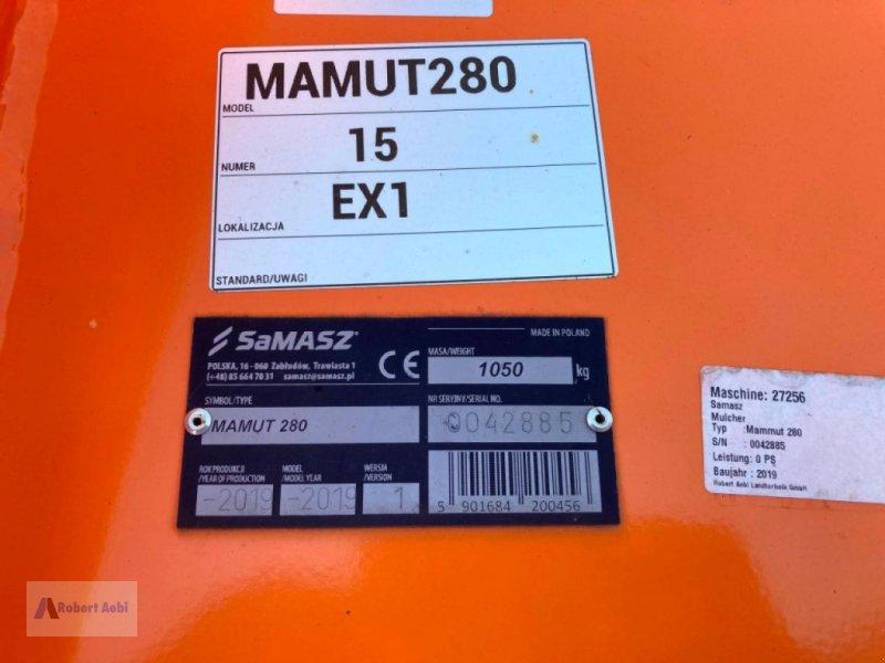 Mulcher a típus SaMASZ MAMUT 280 SONDERPRe, Neumaschine ekkor: Hillesheim (Kép 10)