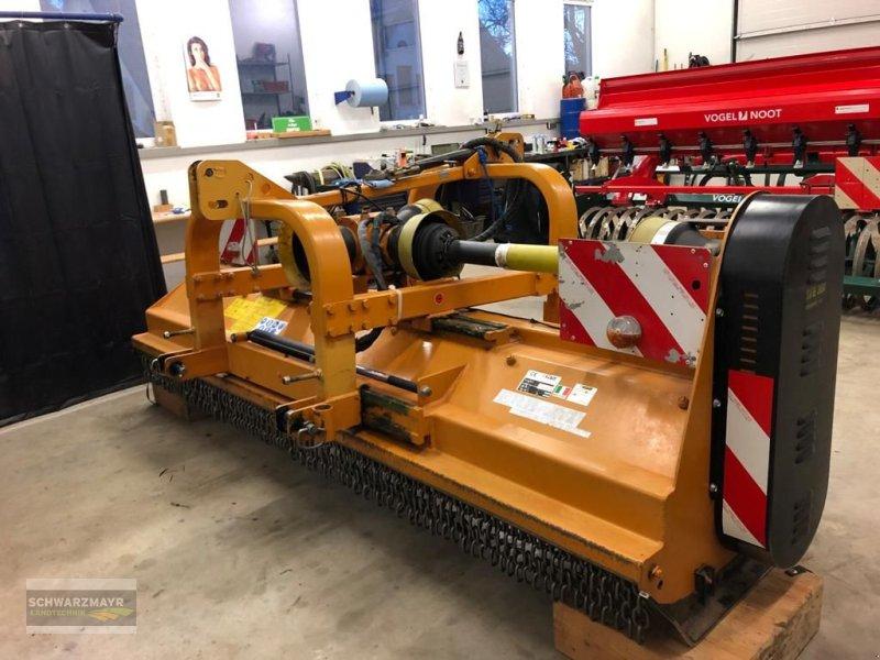 Mulchgerät & Häckselgerät типа Berti TFH/M 300cm, Gebrauchtmaschine в Gampern (Фотография 1)