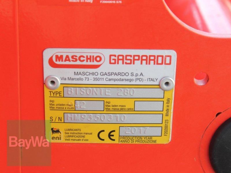 Mulchgerät & Häckselgerät des Typs Maschio Bisonte 280, Gebrauchtmaschine in Straubing (Bild 8)