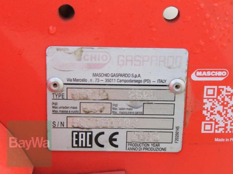 Mulchgerät & Häckselgerät des Typs Maschio BRAVA 250, Gebrauchtmaschine in Straubing (Bild 9)