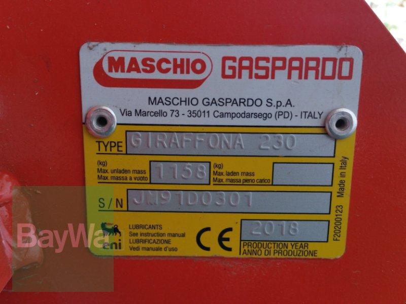 Mulchgerät & Häckselgerät des Typs Maschio Giraffona 230 SE *Miete ab 144€/Tag*, Gebrauchtmaschine in Bamberg (Bild 6)