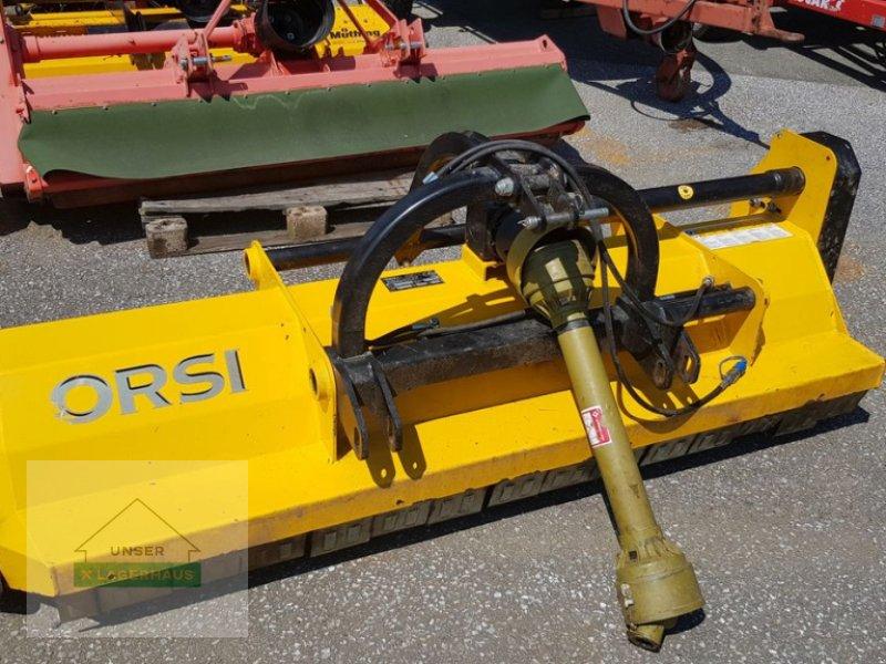 Mulchgerät & Häckselgerät des Typs Orsi WT2250, Gebrauchtmaschine in Wies (Bild 1)