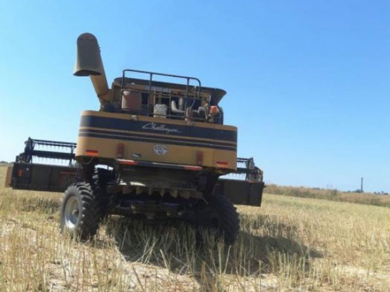 Oldtimer-Mähdrescher des Typs CHALLENGER CH670B, Neumaschine in Київ (Bild 1)