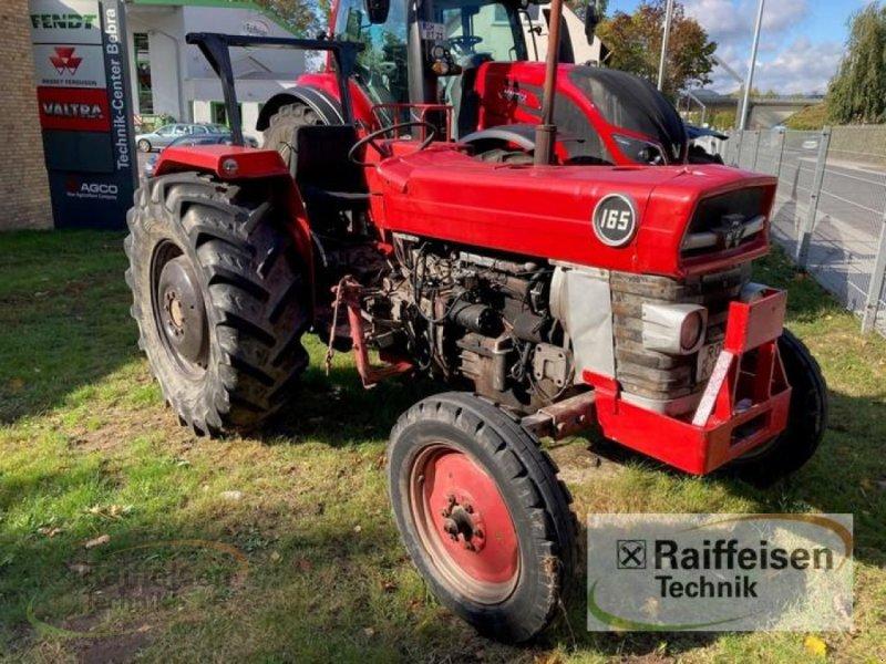 Oldtimer-Traktor a típus Massey Ferguson 165, Gebrauchtmaschine ekkor: Bebra (Kép 1)