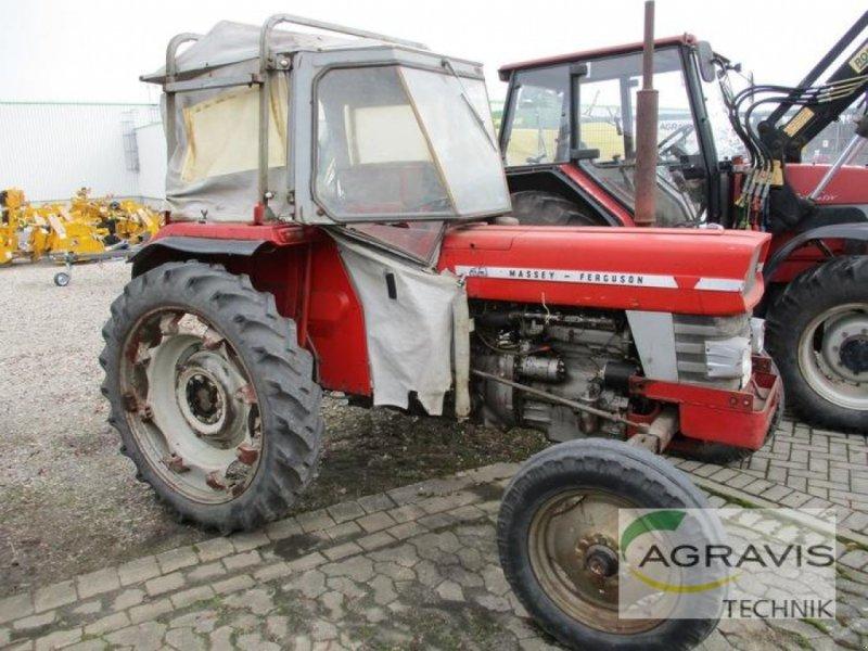 Oldtimer-Traktor des Typs Massey Ferguson SCHLEPPER, Gebrauchtmaschine in Königslutter (Bild 1)