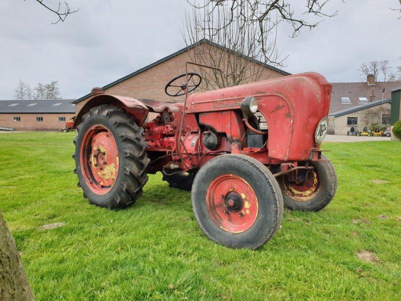 Oldtimer-Traktor a típus Porsche Allgaier A116, Gebrauchtmaschine ekkor: Zwartebroek (Kép 2)
