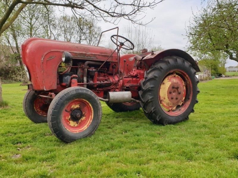 Oldtimer-Traktor a típus Porsche Allgaier A116, Gebrauchtmaschine ekkor: Zwartebroek (Kép 1)