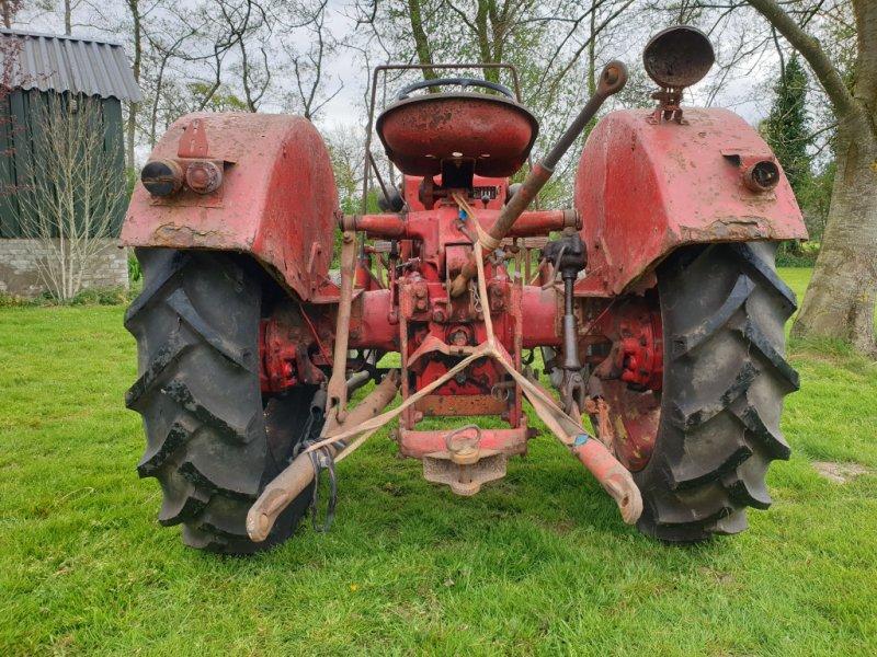 Oldtimer-Traktor a típus Porsche Allgaier A116, Gebrauchtmaschine ekkor: Zwartebroek (Kép 3)