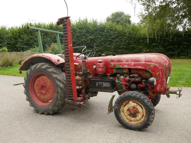 Oldtimer-Traktor des Typs Porsche Standard 219, Gebrauchtmaschine in Mähring (Bild 1)