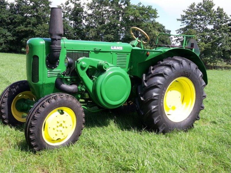 Oldtimer-Traktor a típus Sonstige Lanz Bulldog D6006, Gebrauchtmaschine ekkor: Bakkeveen (Kép 1)