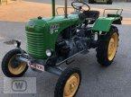 Oldtimer-Traktor типа Steyr 80 в Zell an der Pram