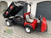 Pflegefahrzeug & Pflegegerät типа Toro Workman 4300, Gebrauchtmaschine в Regensburg