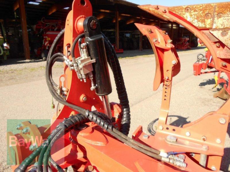Pflug des Typs Maschio UNICO L VARIO 5+, Vorführmaschine in Mindelheim (Bild 9)