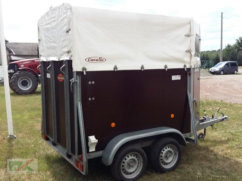 PKW-Anhänger des Typs Boeckmann Cavallo Spezial, Gebrauchtmaschine in Kathendorf (Bild 3)