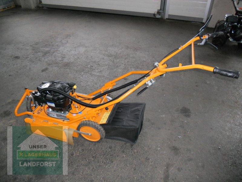 Rasenmäher typu Sonstige AS 50 WeedHex, Neumaschine v Knittelfeld (Obrázok 2)