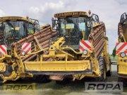 Reinigungslader типа ROPA euro-Maus 4, Gebrauchtmaschine в Herrngiersdorf