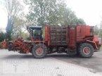Rübenroder des Typs Holmer KRBS Classic in Pragsdorf