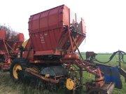 Rübenroder tip Tim TEA 90 Med el-ventiler. Maskinen har kørt i år., Gebrauchtmaschine in øster ulslev