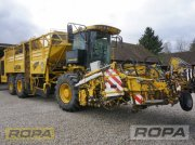 ROPA euro-Tiger V8-3 Rübenvollernter