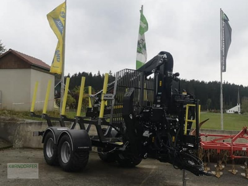 Rückewagen & Rückeanhänger типа EiFo Sonstiges, Gebrauchtmaschine в Rehau (Фотография 1)