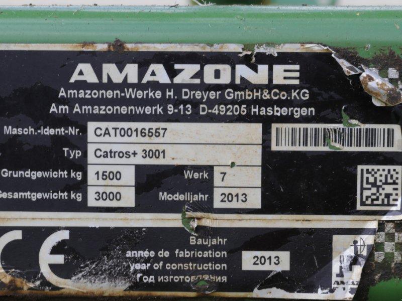 Scheibenegge des Typs Amazone Catros + 3001, Gebrauchtmaschine in Weißenburg (Bild 3)