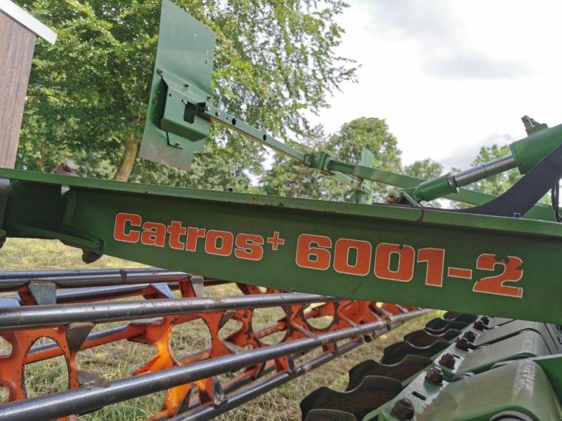 Scheibenegge des Typs Amazone Catros 6001-2, Gebrauchtmaschine in Dinklage (Bild 4)