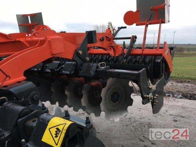 Scheibenegge des Typs Kuhn Optimer 303+, Gebrauchtmaschine in Diez (Bild 2)