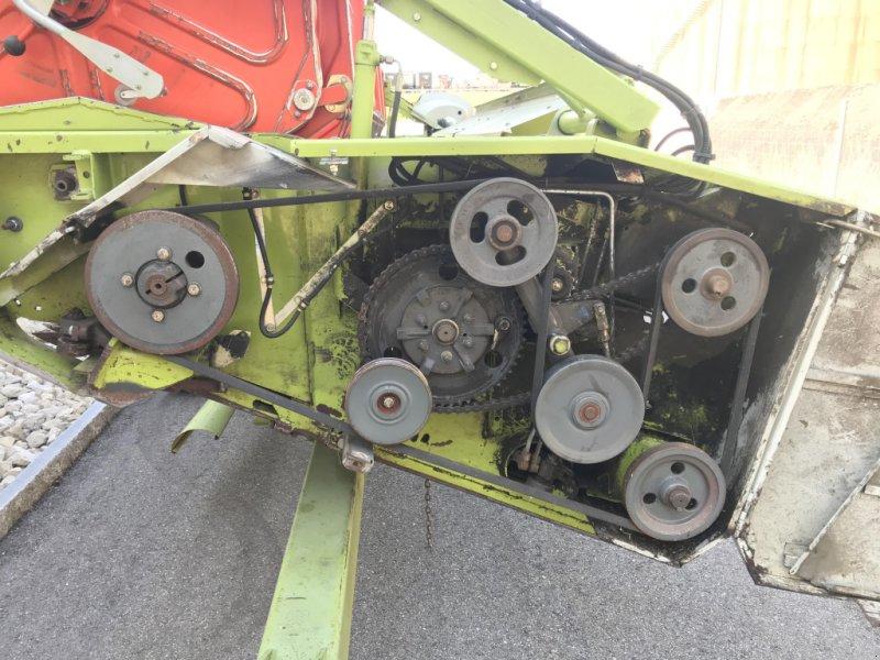 Schneidwerk des Typs CLAAS V600 VARIO, Gebrauchtmaschine in Oberbipp (Bild 8)