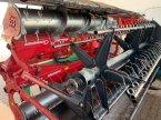 Schneidwerk des Typs Geringhoff Grainstar 540 in Ortenburg