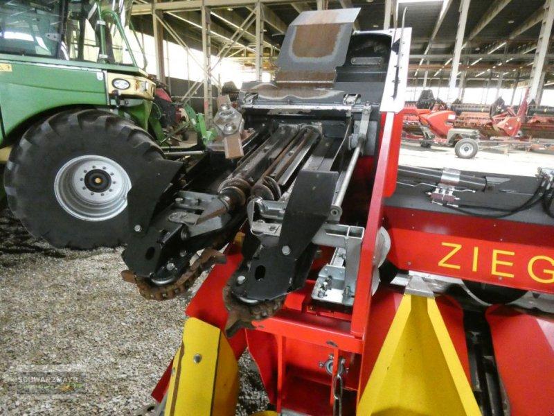 Schneidwerk tip Ziegler Cornchampion 6/70, Vorführmaschine in Aurolzmünster (Poză 6)