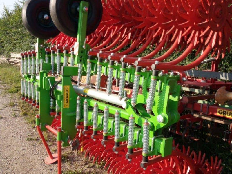 Sonstige Bodenbearbeitungsgeräte typu Sonstige Sternstriegel, Neumaschine w Siekierczyn (Zdjęcie 1)